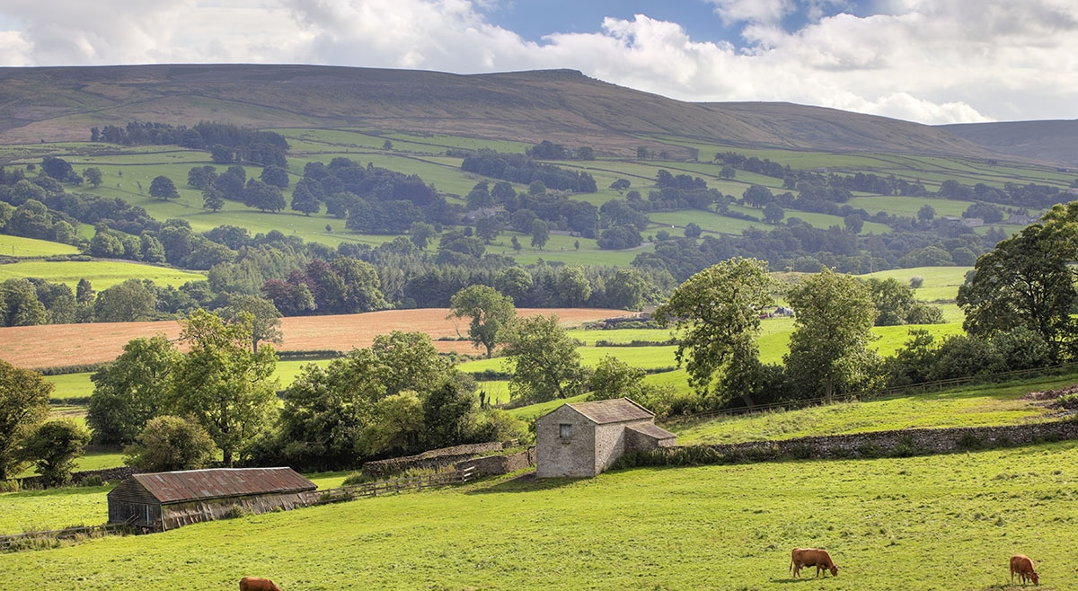 dentist jobs in rural Yorkshire and the North East of England